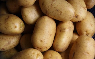 Sweet Potato vs White Potato: Which Potato Is Healthiest?